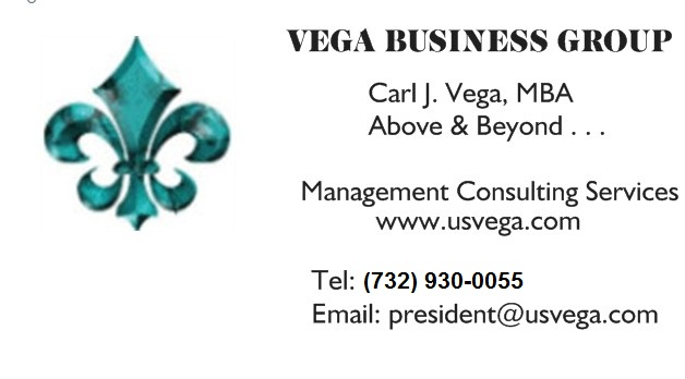 * VEGA BUSINESS GROUP *